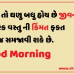 samay ni kimat Good Morning Gujarati Shayari 2020